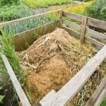 Co do kompostu nepatří