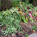 Poklad jménem kompost