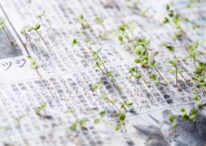 Ekologický papír
